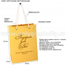 Пакет с логотипом нижний новгород