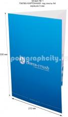 Картонная папка А4, с готового вырубного штампа № 1, компании ДЕНТА-СТИЛЬ