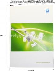 Картонная папка А4, с Заказного вырубного штампа компании РОЗАН